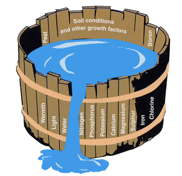 Liebig's barrel illustrating how crop growth is inhibited if one nutrient is in short supply.