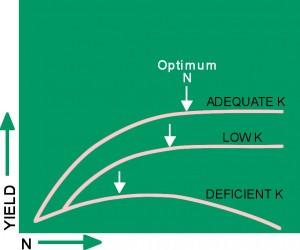 Fig 1: K effect on N response