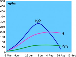 Fig 2: Nutrient uptake of a typical 8 t/ac Wheat Crop