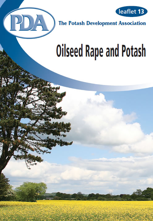 Oilseed Rape and Potash