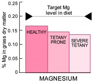 Magnesium content of healthy and tetany prone pasture