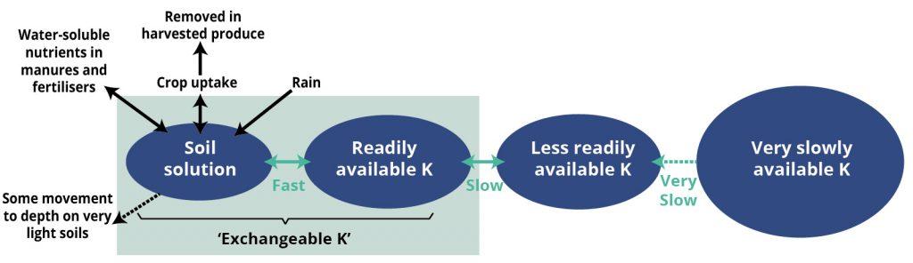Simplified Potash Cycle for organic growers