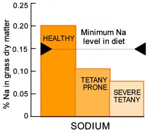 Sodium content of healthy and tetany prone pasture