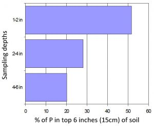 Fig 1: Illustration of the percentage of extractable P found at different depths of a soil which had received only surface cultivations for 10 years.