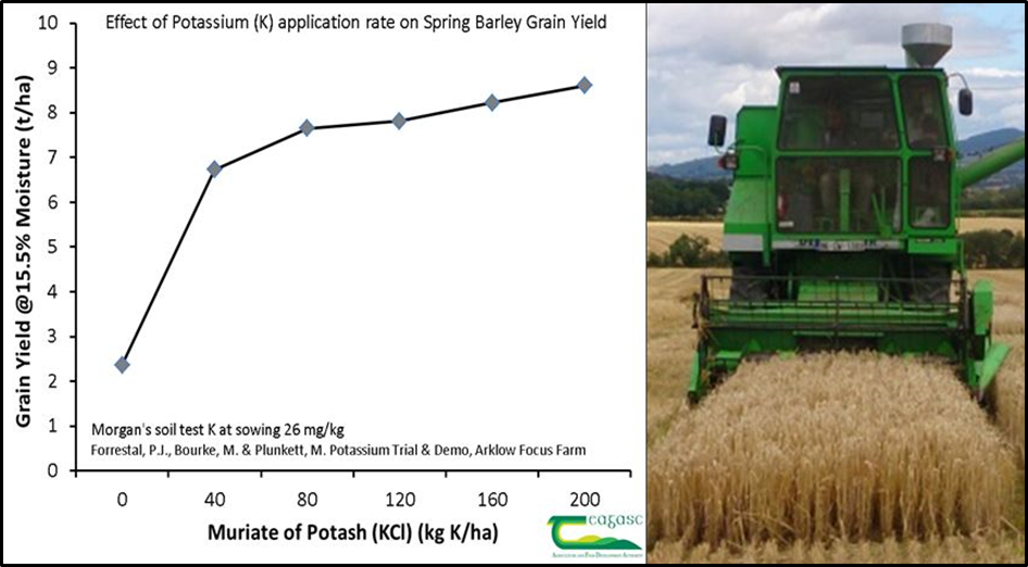 Figure 4. Effect of K fertiliser application on spring barley yield at low soil test K