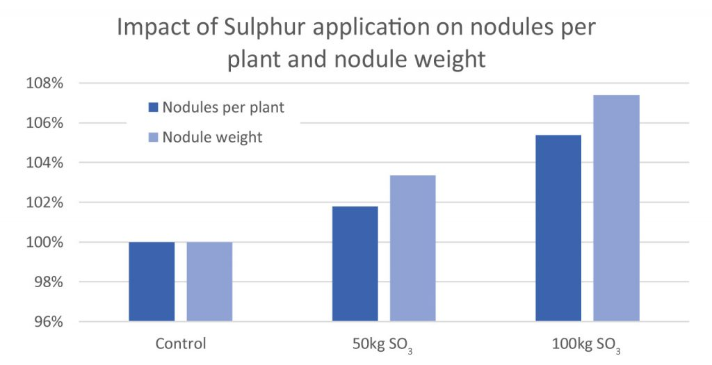 Impact of sulphur application on nodules per plant and nodule weight