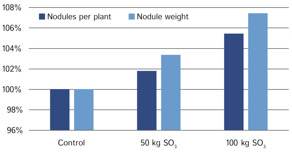 Impact of sulphur application on nodules per plant and nodule weight.